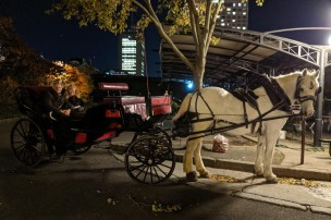 An evening carriage ride
